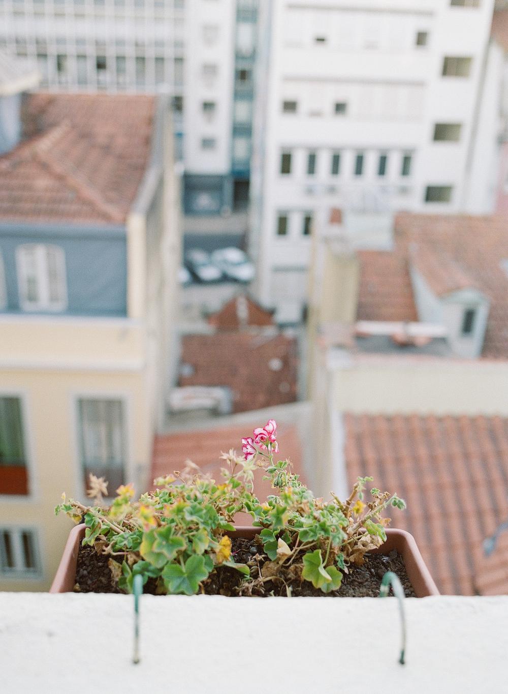 airbnb-1009.jpg