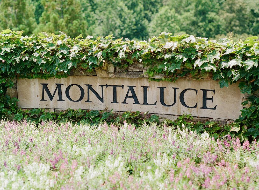 Montaluce Winery Wedding-3.jpg