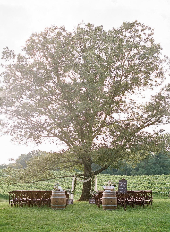 Montaluce Winery Wedding-22.jpg