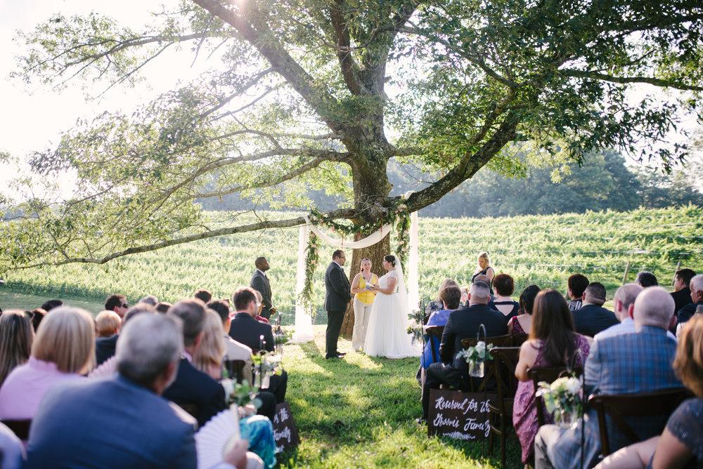 Montaluce Winery Wedding-26.jpg