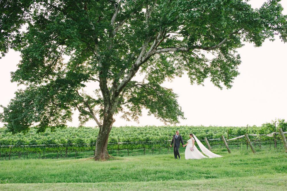 Montaluce Winery Wedding-33.jpg