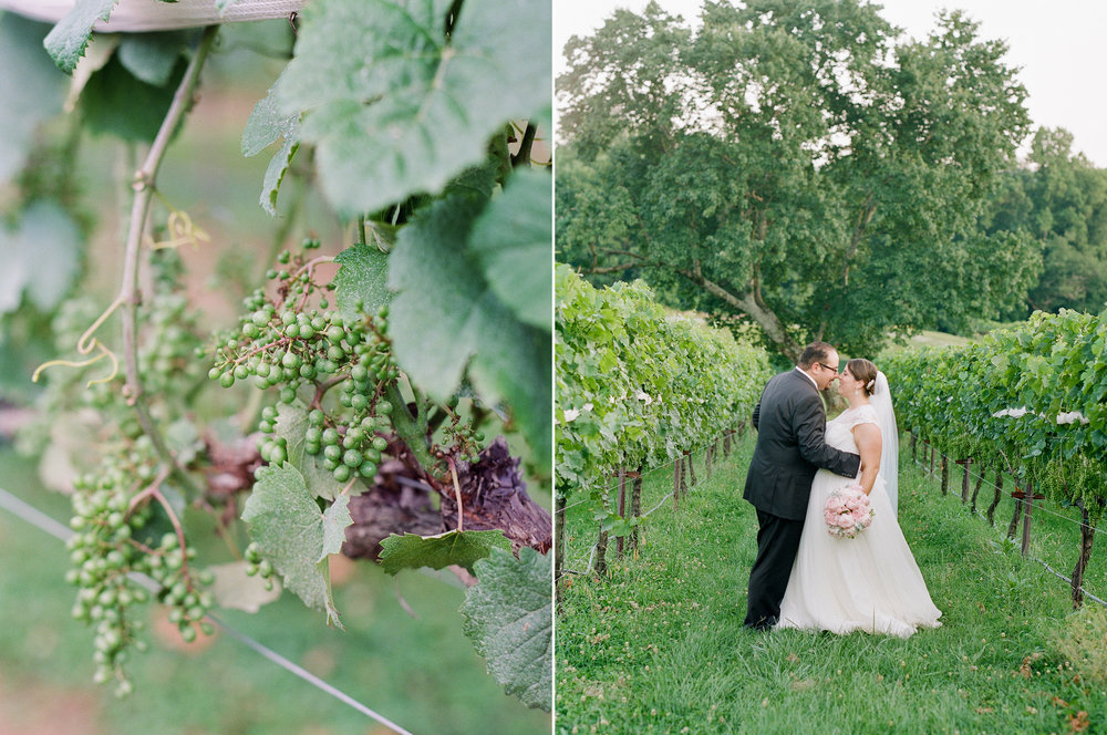Montaluce Winery Wedding Photos in the Vines.jpg
