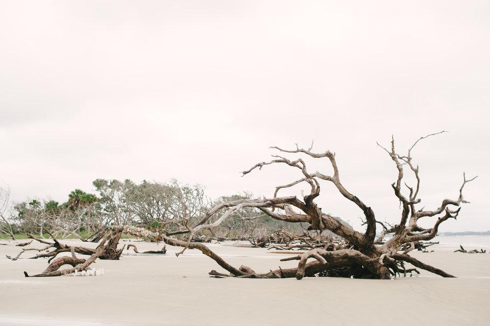 Driftwood Beach Bridal Session Jekyll Island-1006.jpg