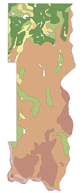 Pre-settlement habitat of Washington County includes prairie, oak savanna, and deciduous forests.