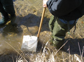 water_monitoring_volunteer_streams_1.jpg