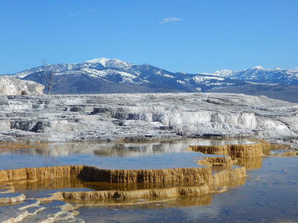 Mammoth Hot Springs.JPG