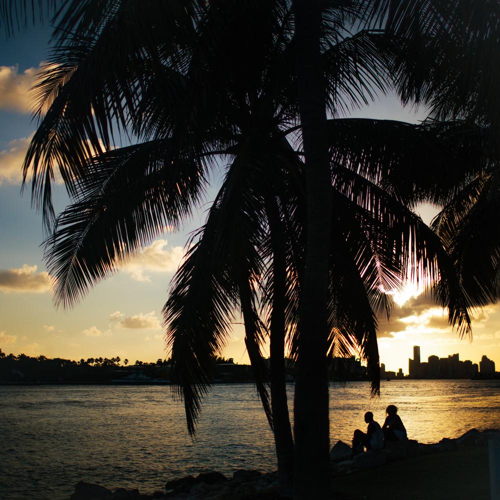 Miami.web1.jpg