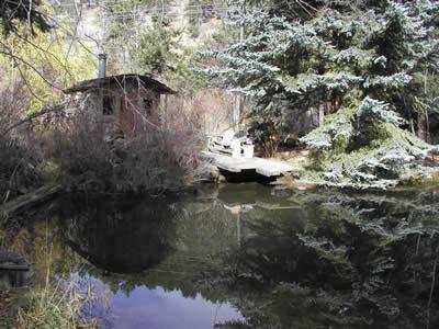 pond and sauna