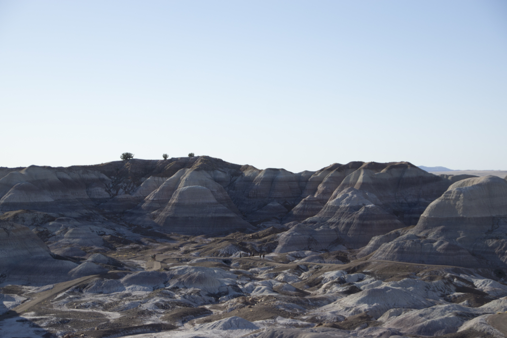 Blue Mesa, Petrified Forest National Park.