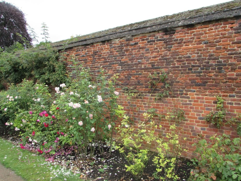 Hampton Court gardens 1.jpg