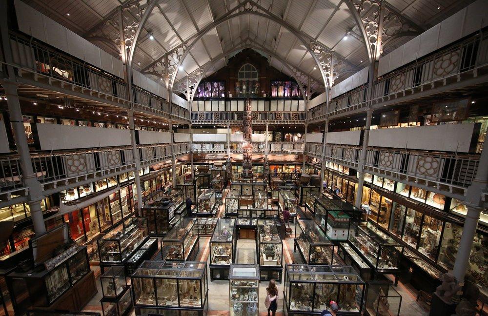 Interior_of_Pitt_Rivers_Museum_2015.jpg