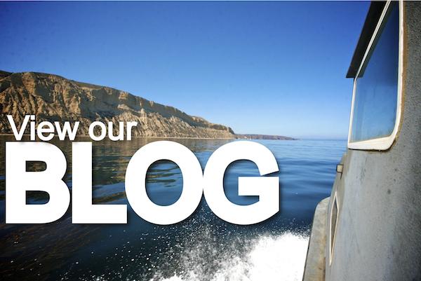 view our blog.radon cruising2..jpg