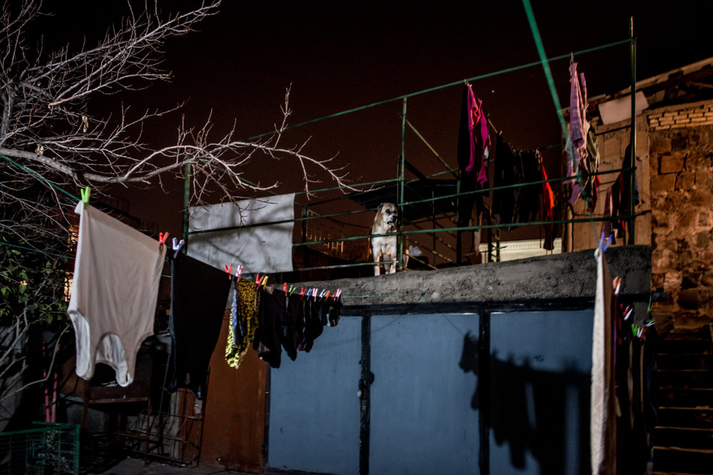 The family of Mari Kilejian, 41, and Khachig Manuel, 56, was one of the last to flee the northern Syrian city of Kobani in 2014 when the Islamic State attacked it. Pictured is the backyard of the family's apartment in Armenia, guarded by the neighbor's dog Jacko.