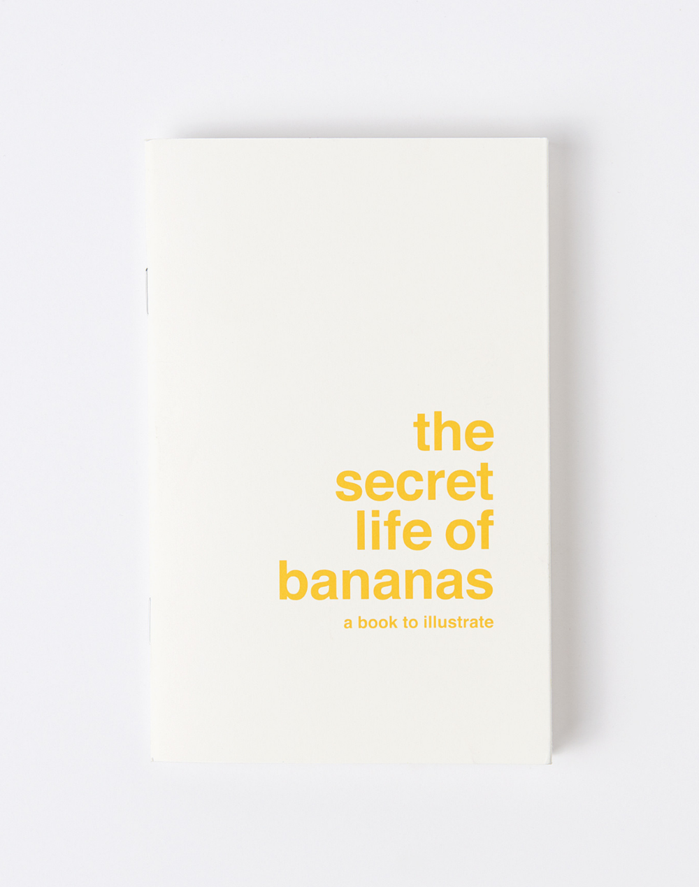 THE SECRET LIFE OF BANANAS COVET & LOU, $13 If you have a budding artist in the house, plenty of art supplies for winter car trips are a must. This book gives your child a topic and a story that they create the artwork for.