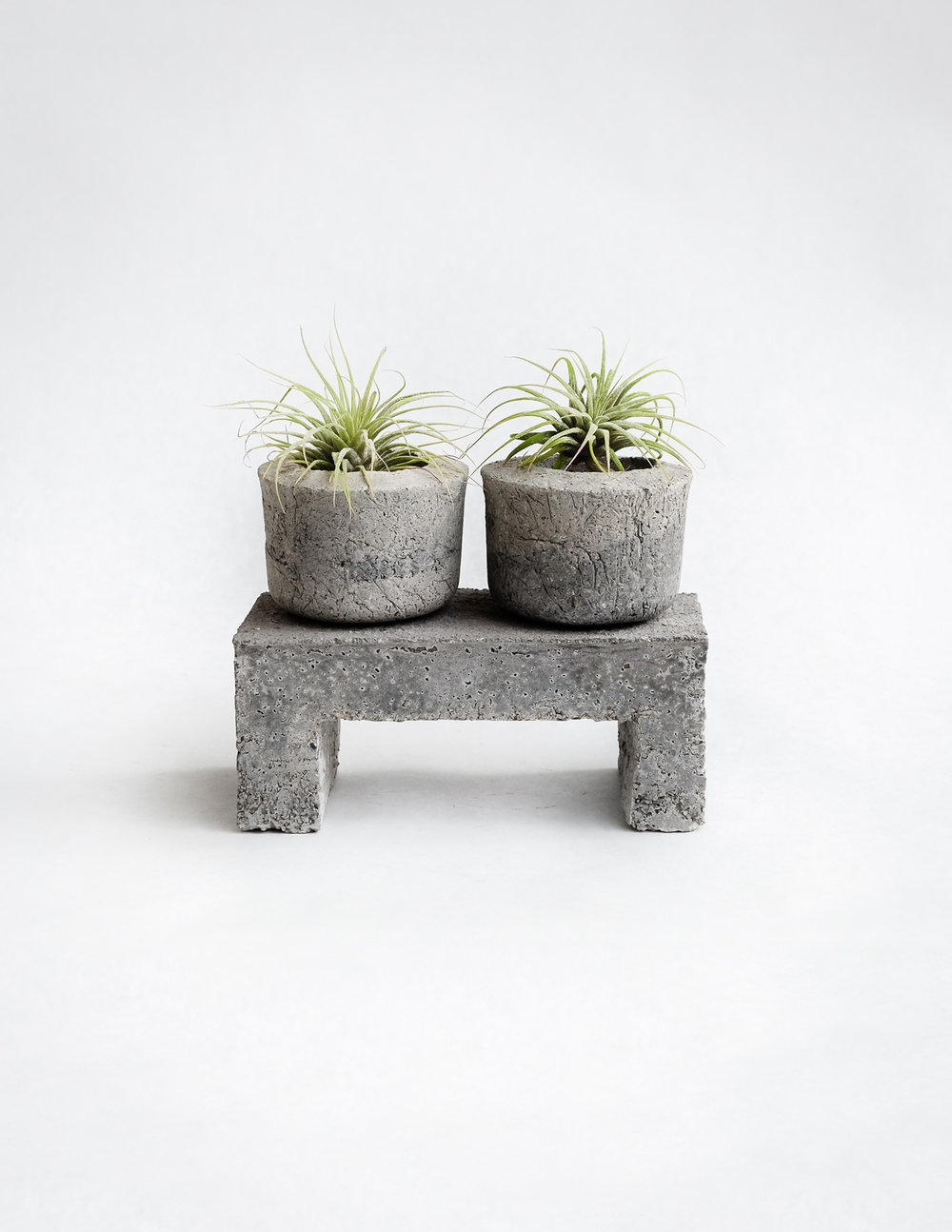 PERCHED STONE POT DUO   PISTILS NURSERY, $46
