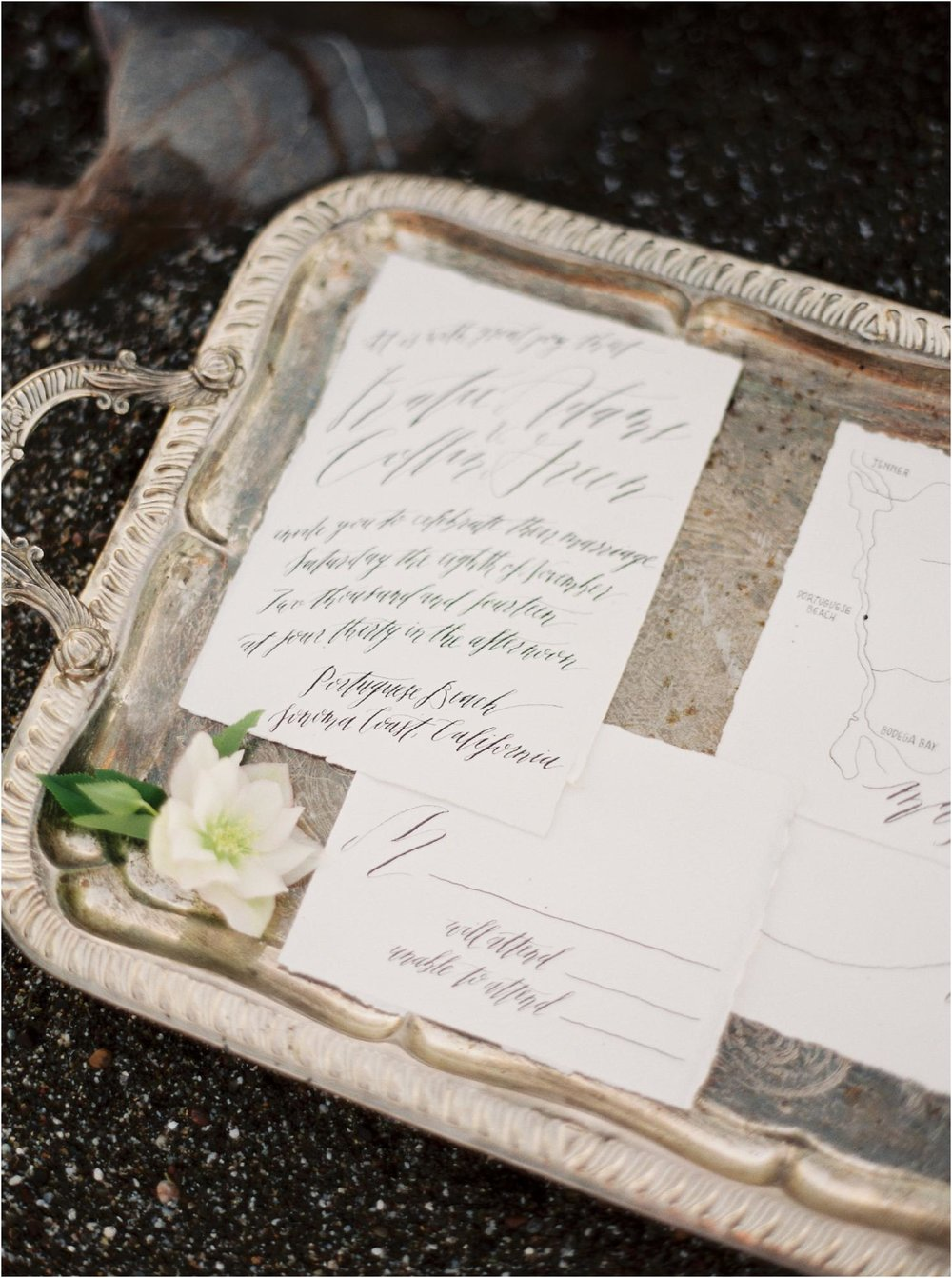 california_sonoma_film_wedding_photographers_0874.jpg