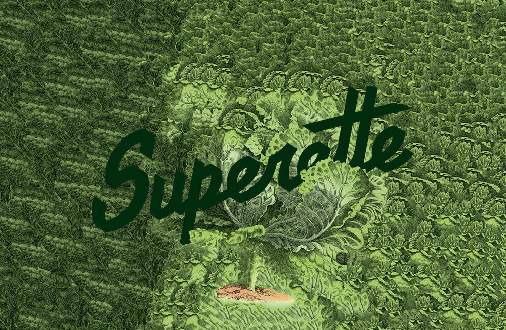 Superette-_Backgrounds_lettuce_logo.jpg