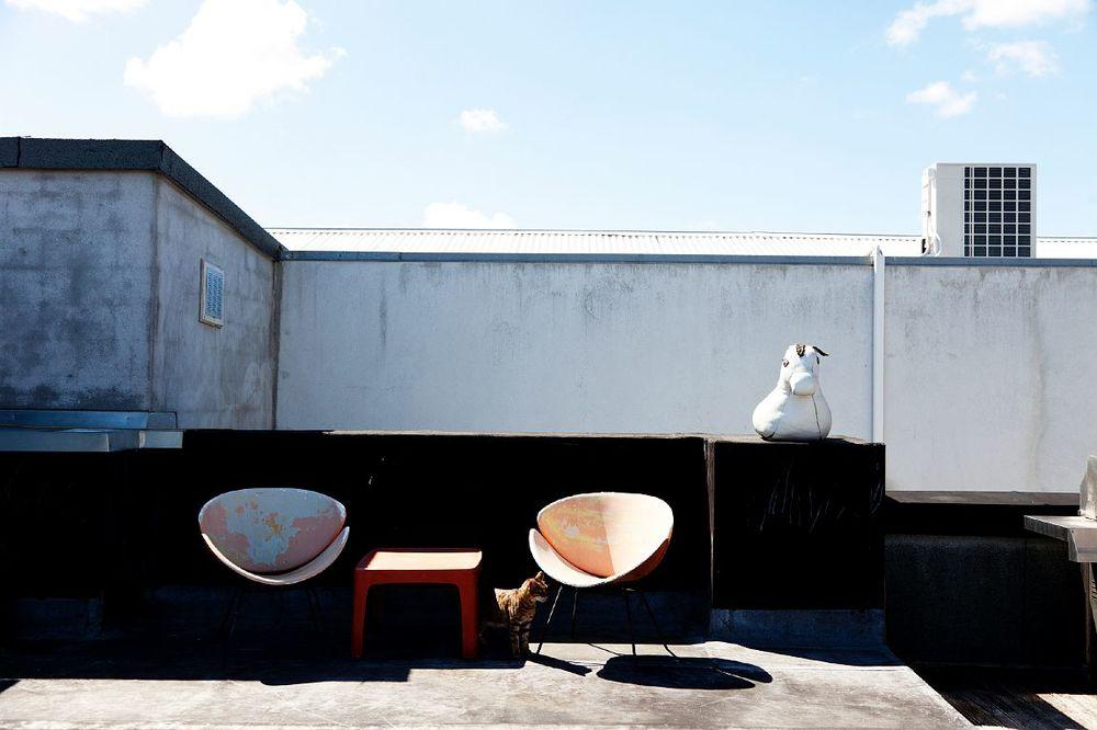 I detta fantastiska hem bor Charlotte Rust tillsammans med katten Cat.  Bilder från  The Selby