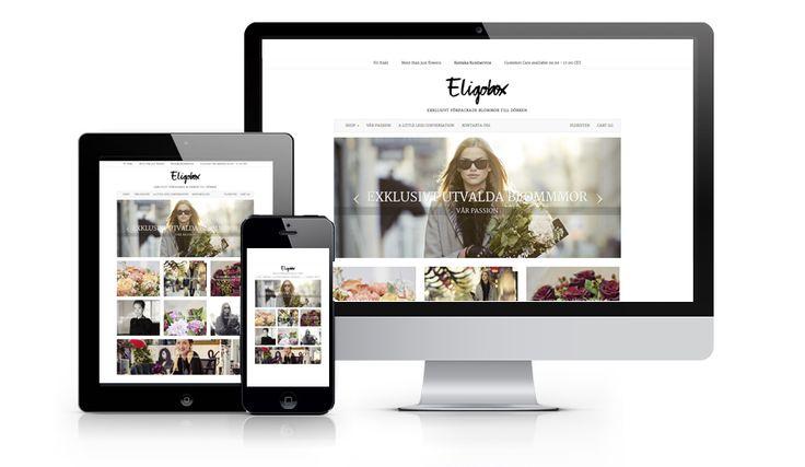 eligobox.jpg