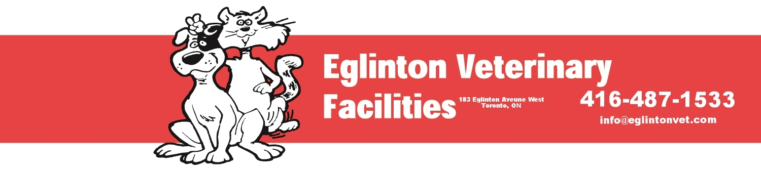 Eglinton Veterinary Facilities