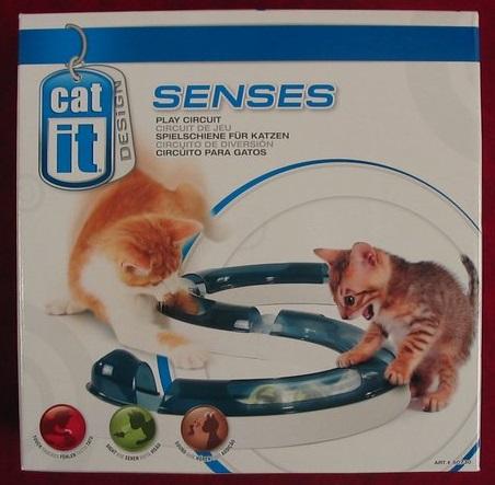 CatitSensesPlayCircuit.jpg