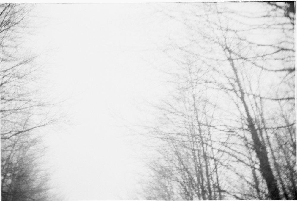 Untitled (22).jpg