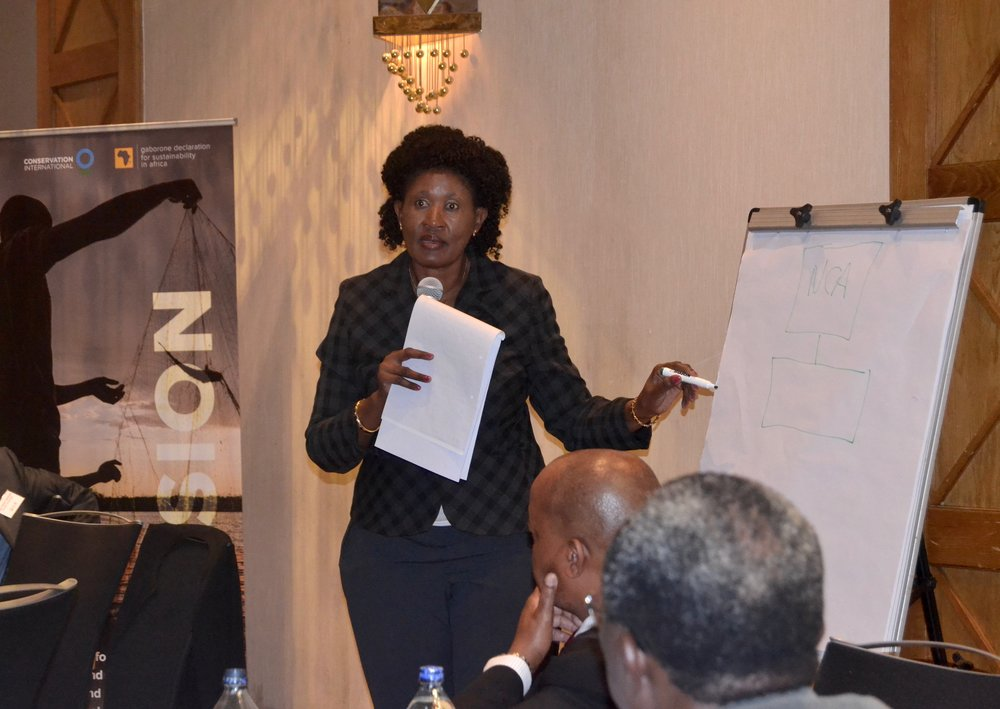 "Portia Segomelo, National Advisor for WAVES Botswana, makes a point for discussion during the ""Regional Perspectives on Natural Capital Accounting"" workshop."
