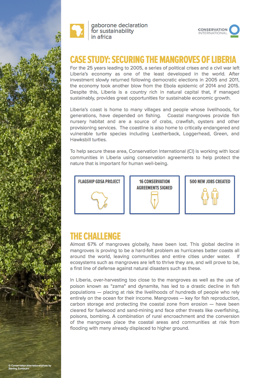 Conservation Agreements protecting Liberia's mangroves