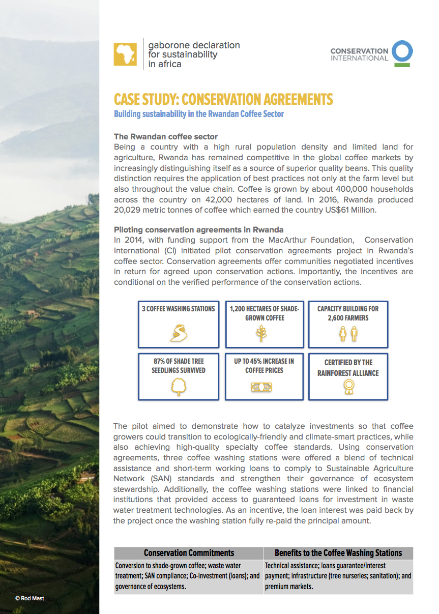 Conservation Agreements working with coffee washing stations in Rwanda