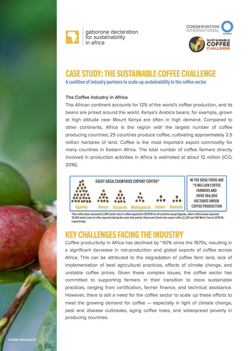 The Sustainable Coffee Challenge