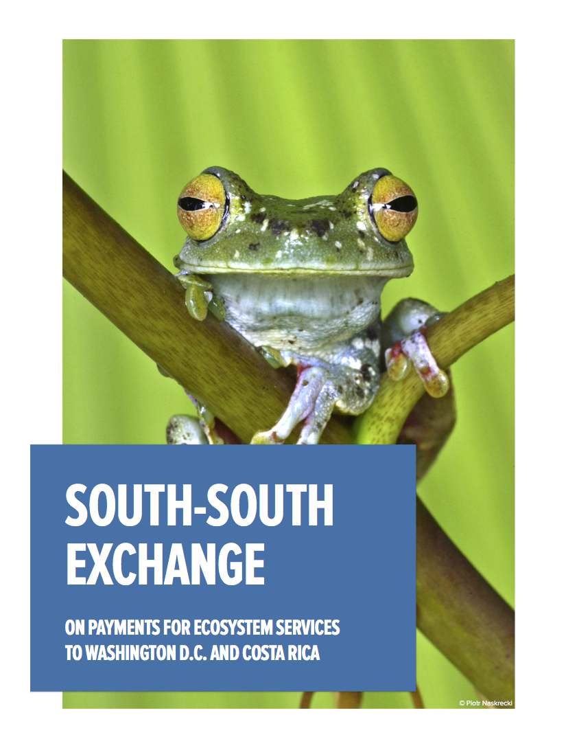 Cover of the South-South Exchange report.