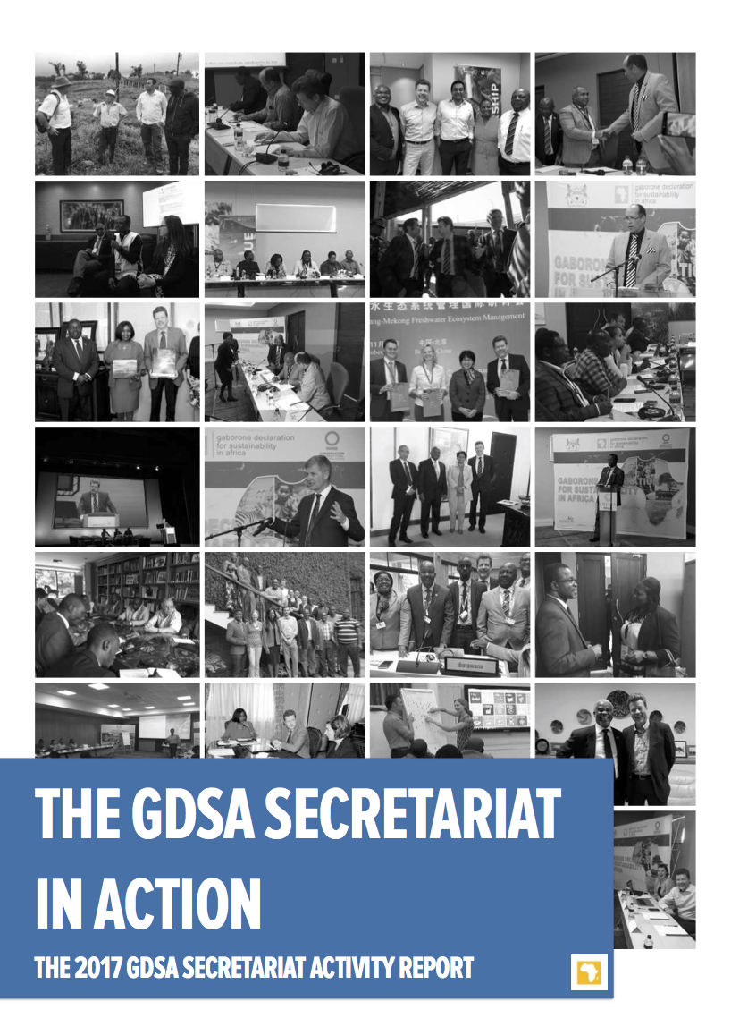 Cover page for the 2017 GDSA Secretariat Activity Report.