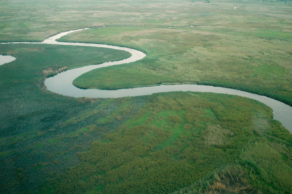 The Okavango River