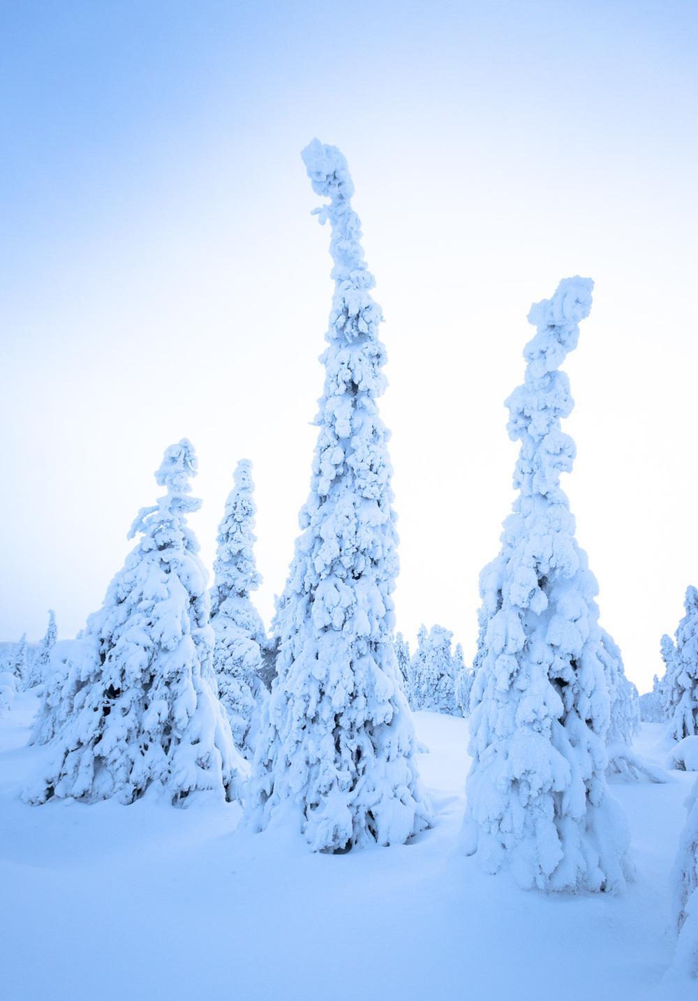 Lapland-011.jpg