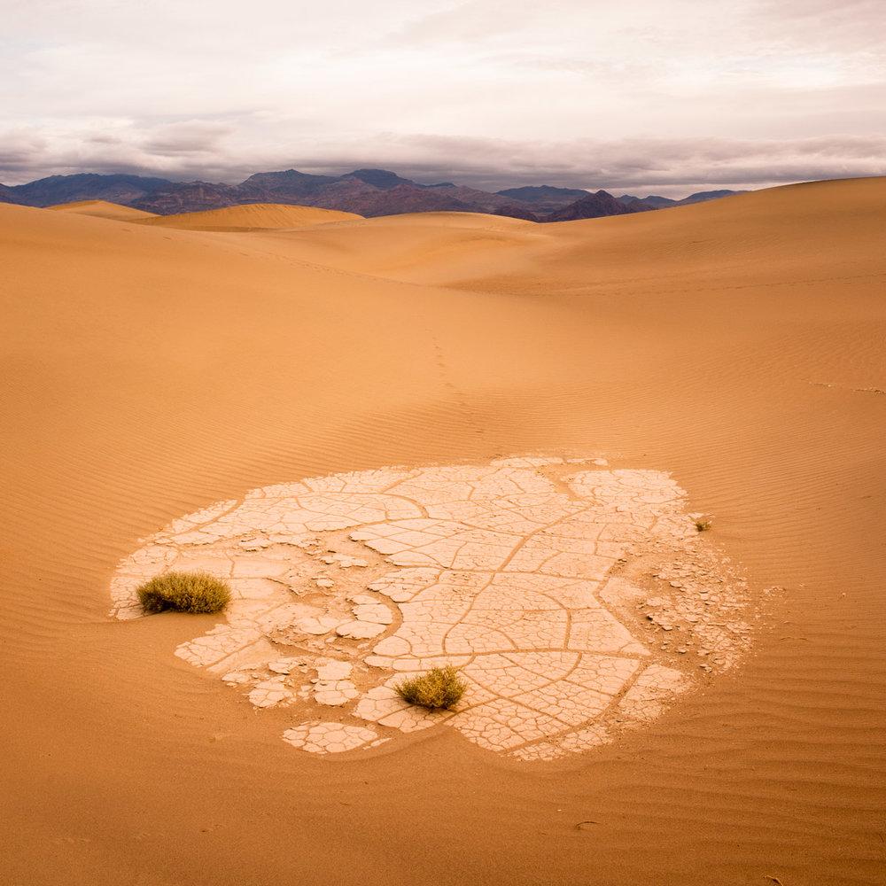Mesquite dunes, Death Valley, USA