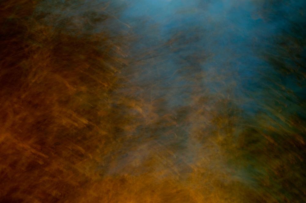 foliage_blur_04.jpg