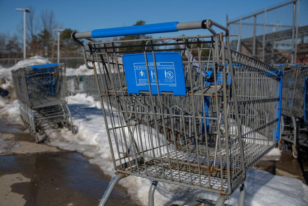 shoppingcarts.jpg