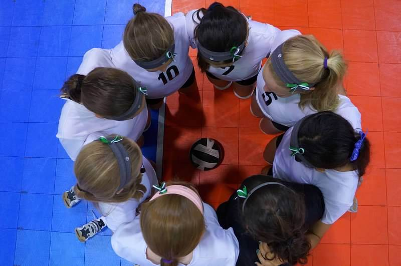 vb girls in huddle.jpg