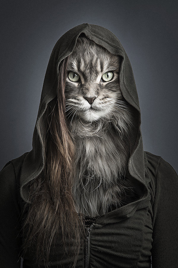 Undercats-Cats-Dressed-as-Their-Owners-are-a-Lot-of-4.jpg