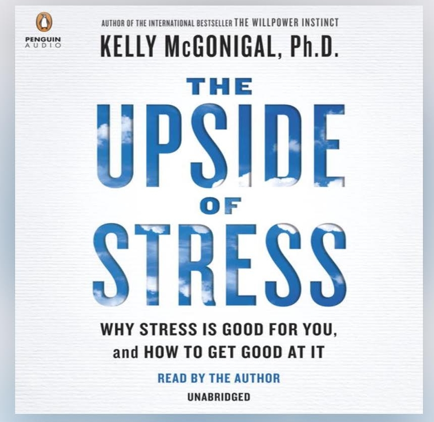 Buy This Book - While reading it, you realized that this would be a good one go back to and listen to again. Embrace Stress!