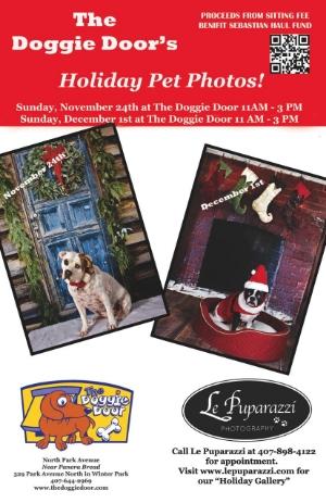 Doggie Door Holiday.jpg
