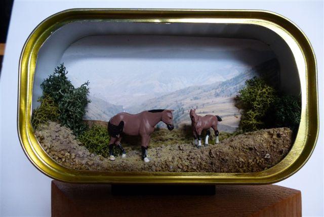Chilc Horses