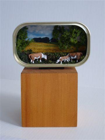 Chilcotin Cows