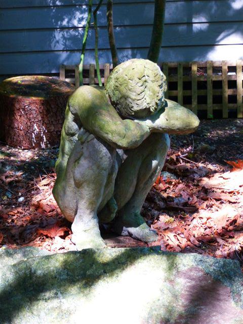Dan in Garden