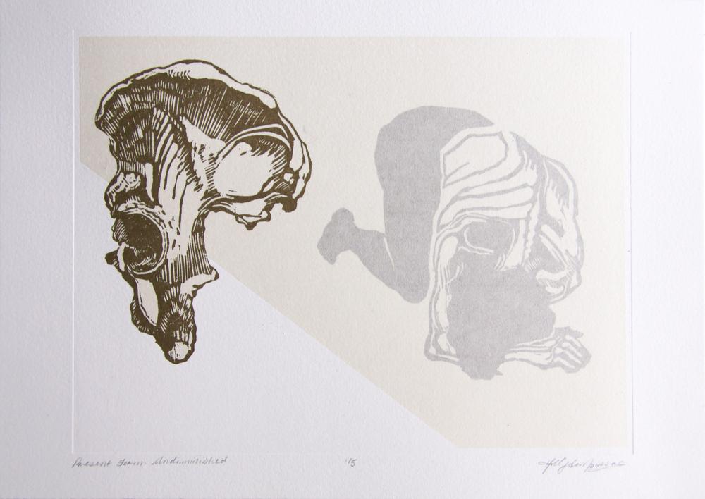 Present Form, Undiminished, 2013