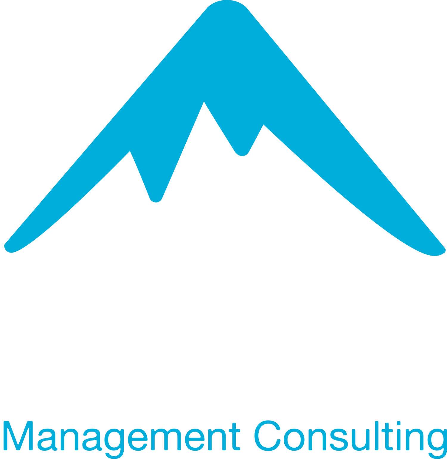 Alpine Management Consulting, LLC