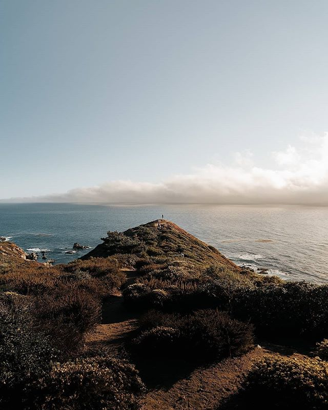 Standing on the edge as a wave of cloud rolls in over the Pacific. • • • • • #westcoast #moodygrams #travelphotography #goldenhour #justgoshoot #thevisualscollective #awesupply #vscocam #fullframe #theIMAGED #artofvisuals #exklusive_shot #agameoftones #visualsoflife #bigsur #feedbacknation #neverstopexploring #surfphotography #eastcoastcreatives #thevisualscollective #awesupply #fog #bevisuallyinspired #bigsur #perfecttiming #weddingphotography #eclectic_shotz #folkgreen #earthfocus #bixbybridge