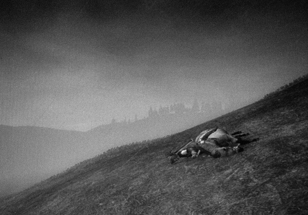 Landscape 8, with dead horse and man on a hillside