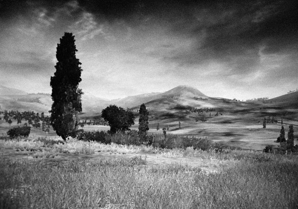 Landscape 5, with cypress tree and mountain