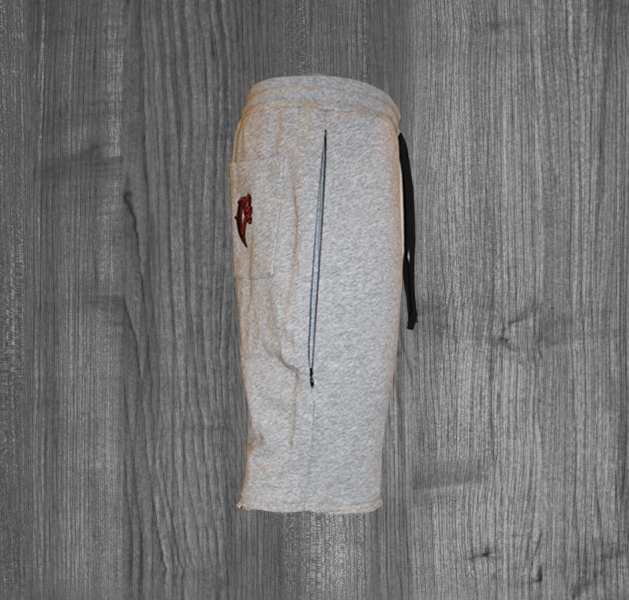 APPLE shorts GREY SIDE2.jpg